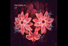 Photo of PULCINELLA – ÇA